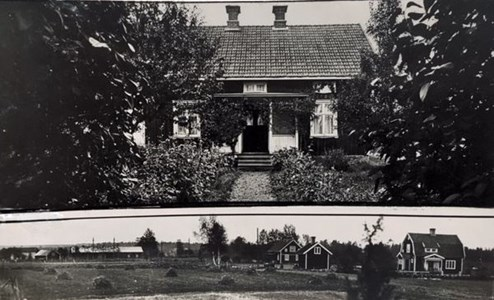 Kalvkärret Aftonro 1937