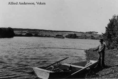 Alfred Andersson, Hede 231 Andreasa