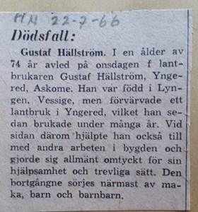 Gustaf Hällström, Yngered