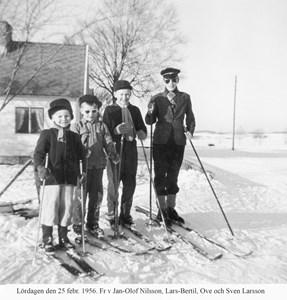 Jan-Olof Nilsson, Lars-Bertil, Ove och Sven Larson med skidor 1956.