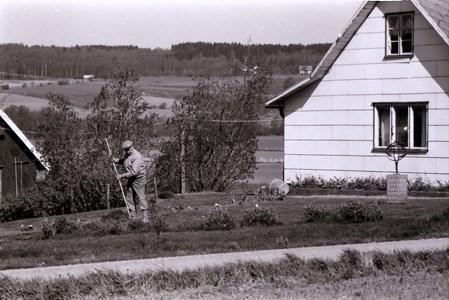 Axel Andersson vårarbetar i trädgården till Askome Salomons Gård 135 år 1987. Gaveln som ses i vänstra bildkanten kan vara det ursprungliga enkla bostadshuset på gården. Under det fanns en murad stenkällare av natursten.