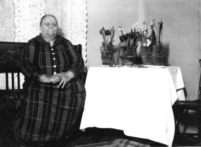 Fru Åkerblom, Eriksdal