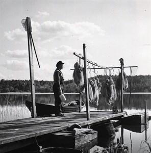 Elis Widlund Säby