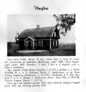 Hagbo