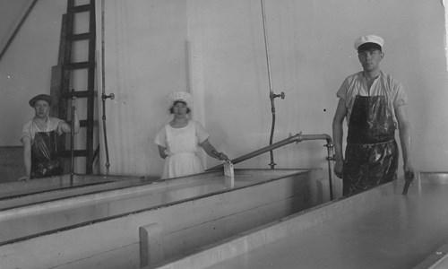 Märta Hannemark på mejeriet 1920-tal