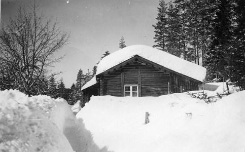 44-15-00-Östra Fösked-Lomtjärn-02.jpg