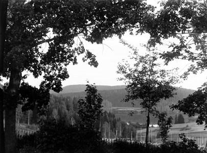 60-03-G-DE-28-Utsikt fr N Hagen mot Oppsjön.jpg