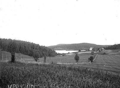 60-03-G-DE-29-Utsikt fr N Hagen mot Oppsjön.jpg