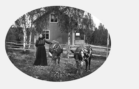 07-255-01-Finnebäck Sågarberget-Kari på Sågarberget-02