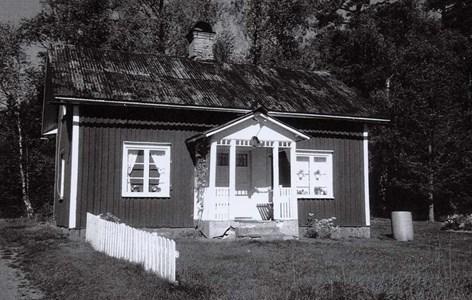 34-36-00-Takene-Skogen-01