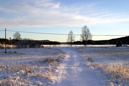 32-01-00-Svartåna-Övrigt-06