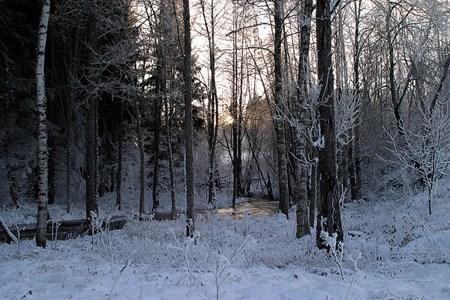 32-01-00-Svartåna-Övrigt-03