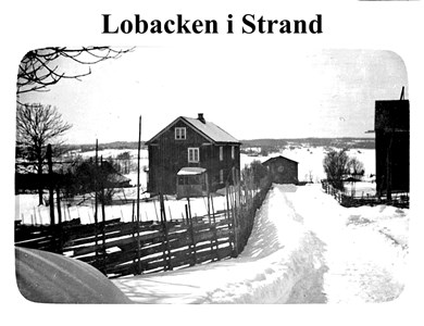 31-11-00-Strand-Lobacken-01