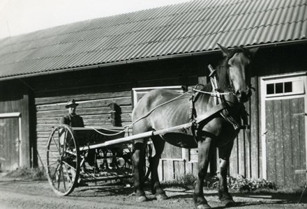 07-185-01-1904-Gustaf Adolf Andersson-01