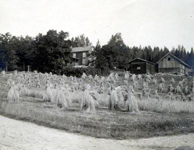 42-06-00-Årnäs-Backen-05.jpg