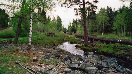 34-56-00-Takene-Rinnefors damm-01.jpg