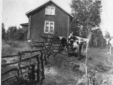 07-290-00-Finnebäck-Västtomta-03.jpg