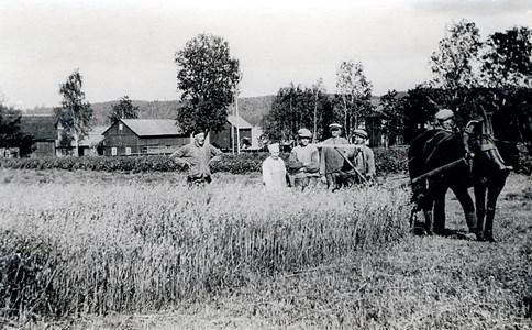 29-25-01-St Skärmnäs-Lycka-01-Skåranna 1930