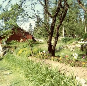 L270-00-Långvak-Rosendal-02.jpg