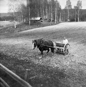 04-020-01-Byn-Där Nole-04