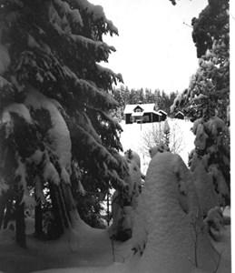29-10-00-St Skärmnäs-Dalhem-02.jpg
