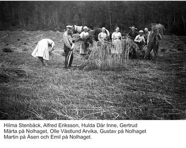 05-030-01-Bäckelid-Där Nole-05-Skördetid