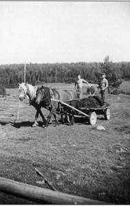 05-030-01-Bäckelid-Där Nole-13-Dretköring 1952