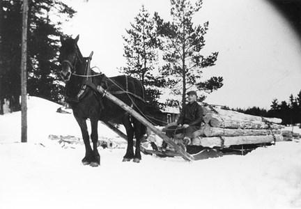 05-030-01-Bäckelid-Där Nole-14-Thor Nyman kör timmer