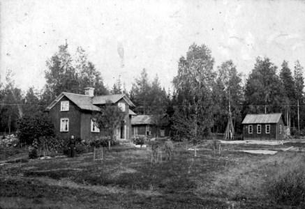 07-305-00-Finnebäck-Änga-01.jpg