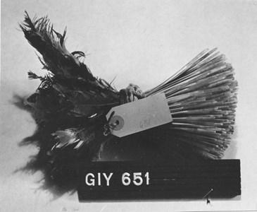 Gi.Y.0651 Brödnagg