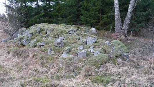 Stenröse Hagalund