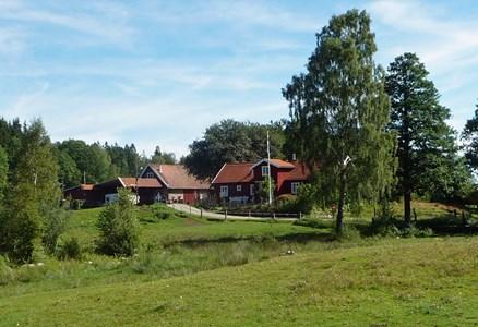 Larsgård Galtabo