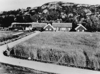 Påtorp 1920.jpg