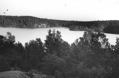 Sjön Trehörningen