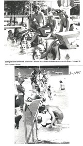 Getinge simskola. 3-1741
