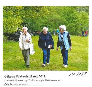 Gökotta på Vallanäs 2019 14-2177