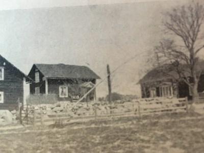 Skogen 1938