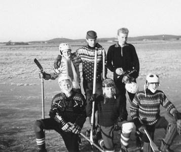 D2000, Gödestad 17:1, Brogård, hockeykillar