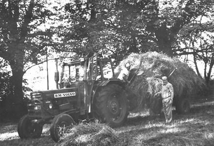 Gödestads kyrkoruin, Thomas Olsson och John Johansson lastar gräs.
