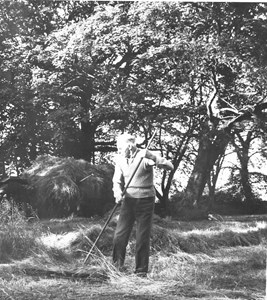 Gödestads kyrkoruin, Erik Johansson räfsar ihop gräs.