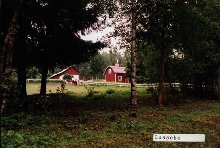 Lussebo
