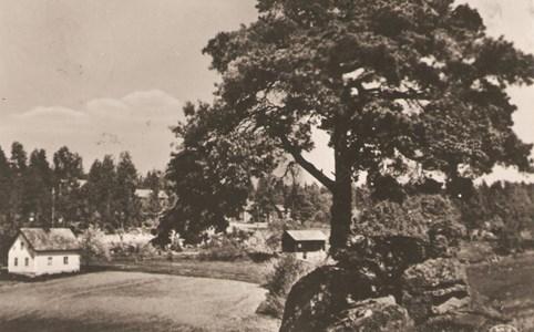 Kvarnvik   Kvarnvikstallen