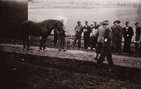 Hästuppvisning 1942