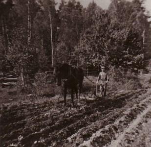 Körning med older Domarvik