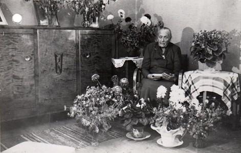 Augusta Kato, Härad.