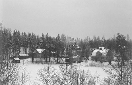 Bälgviken i vinterskrud