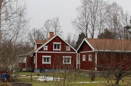 Öraskog #12