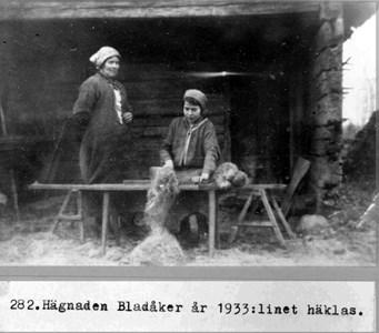 0282 Hägnaden Bladåker 1933. Linet häklas.jpg