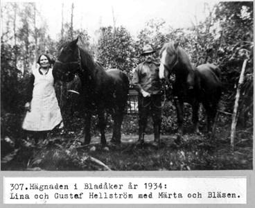 0307 Hägnaden, Bladåker 1934.jpg