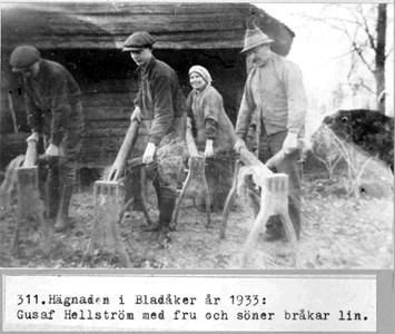 0311 Hägnaden, Bladåker. Linbråkning 1933.jpg